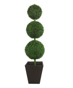 Boxwood Round Topiary