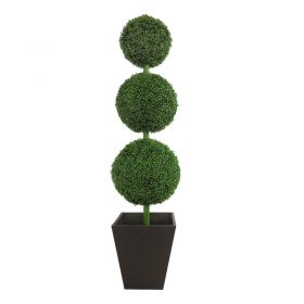 Boxwood Round Topiary