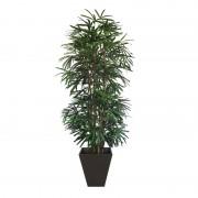 Reyfus Plant