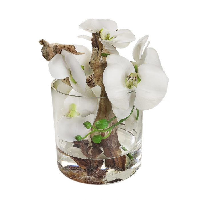White Phalaenopsis Orchid Glass Cylinder