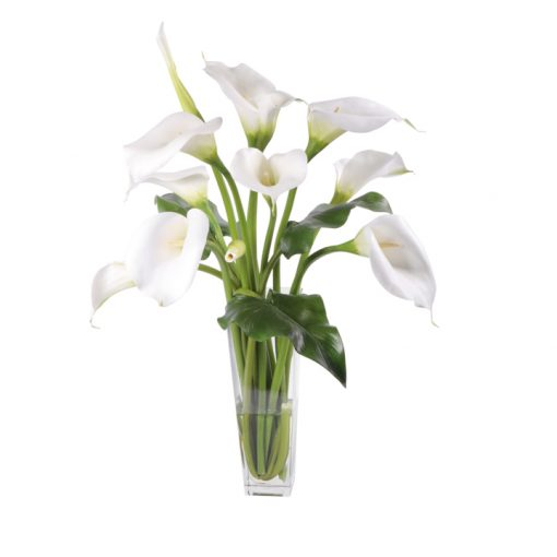 White Calla Lilies Waterlook
