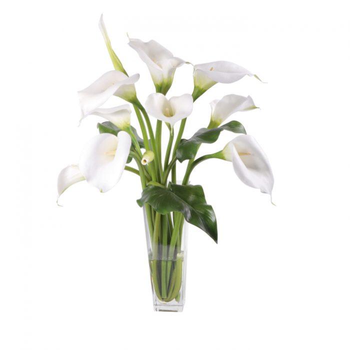 White Calla Lilies Waterlook