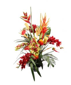 Tropical mix heliconia, anthurium, cymbidium, monstera